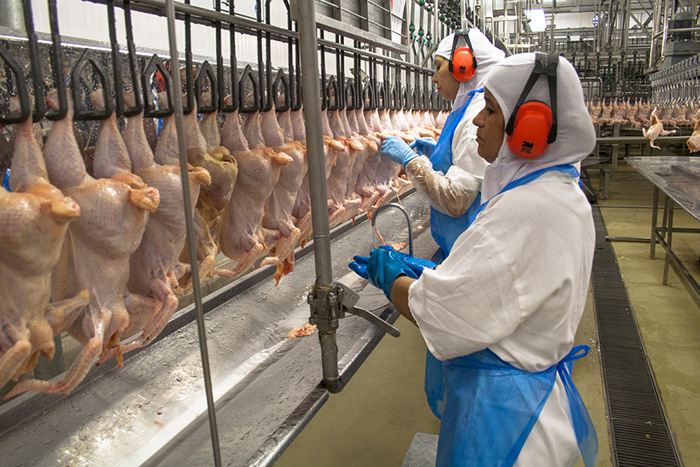 China, Egypt and Chile lift ban on meat imports fromBrazil