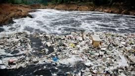 Ecogreeny_plastic_wastes